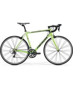 19 Green
